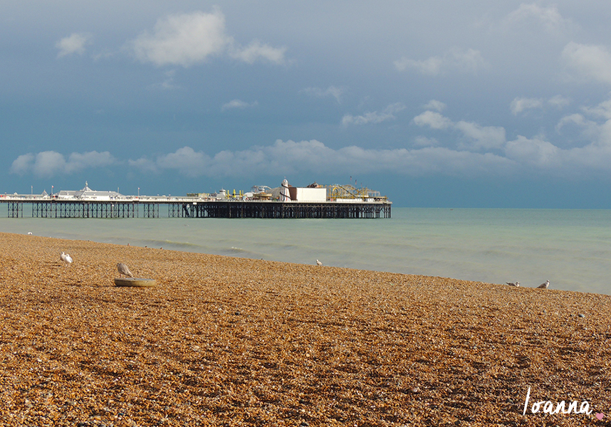 Brighton#1.1