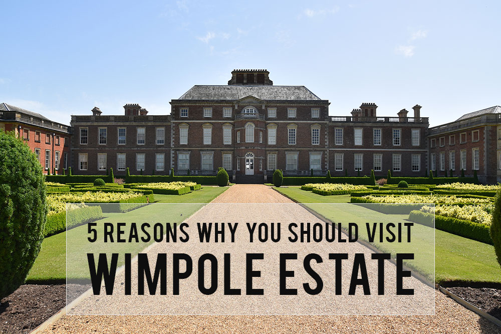 Wimpole Estate | 5 reasons why you should visit